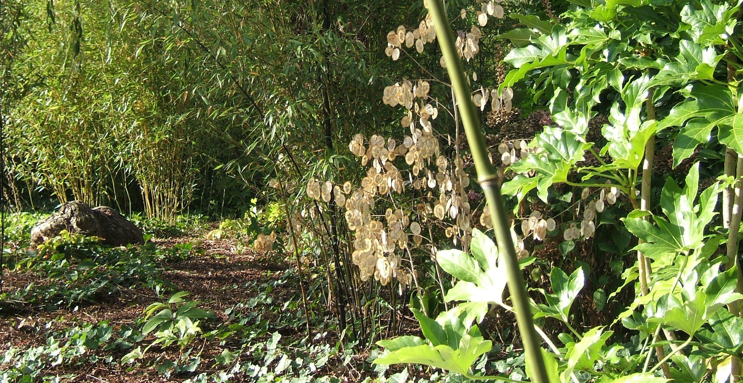 Le jardin de Leo ; Feucherolles ; FORR - PAYSAGE   URBANISME ; FORR paysagiste