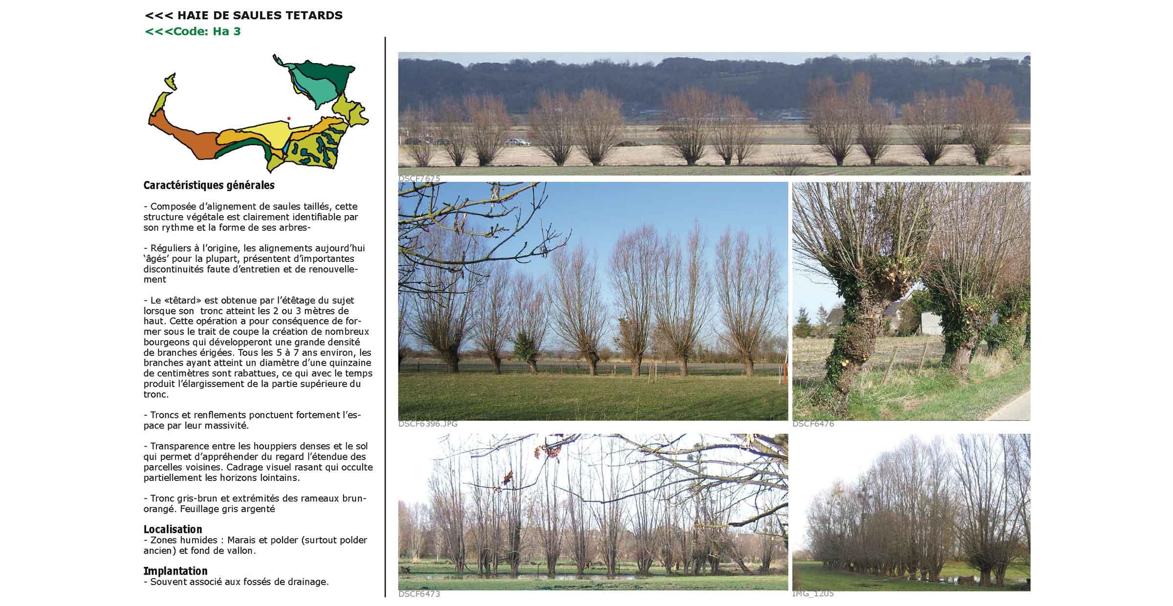 Répertoire de la Baie ; Mont-Saint-Michel ; FORR - PAYSAGE | URBANISME ; FORR paysagiste