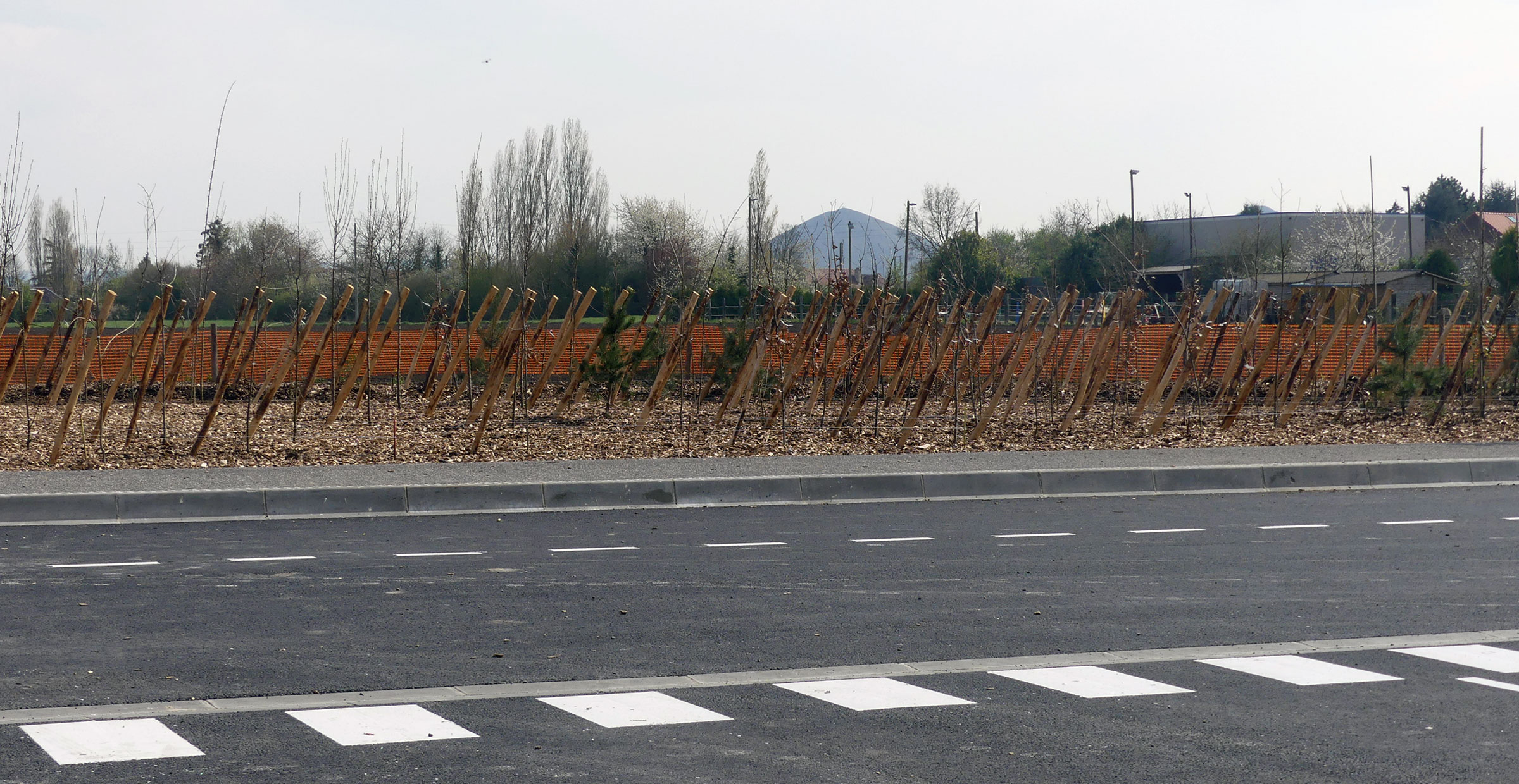 Cité des Electriciens ; Bruay-la-Buissière; FORR - PAYSAGE | URBANISME ; FORR paysagiste